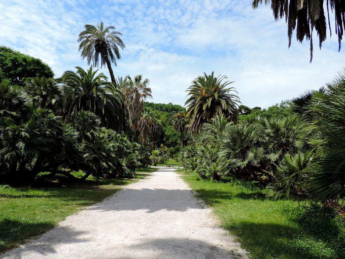 イタリアでも指折りの重要な植物園