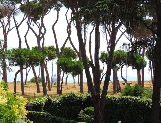 目の前に広がる松林のパノラマと大聖堂のクーポラが楽しめる