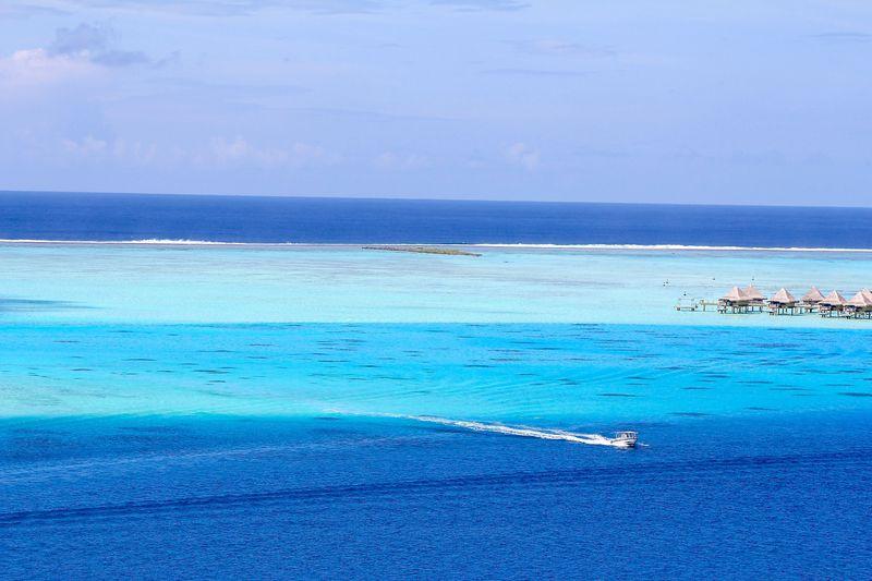 タヒチ・ボラボラ島でイチオシ現地ツアー「サファリツアー」