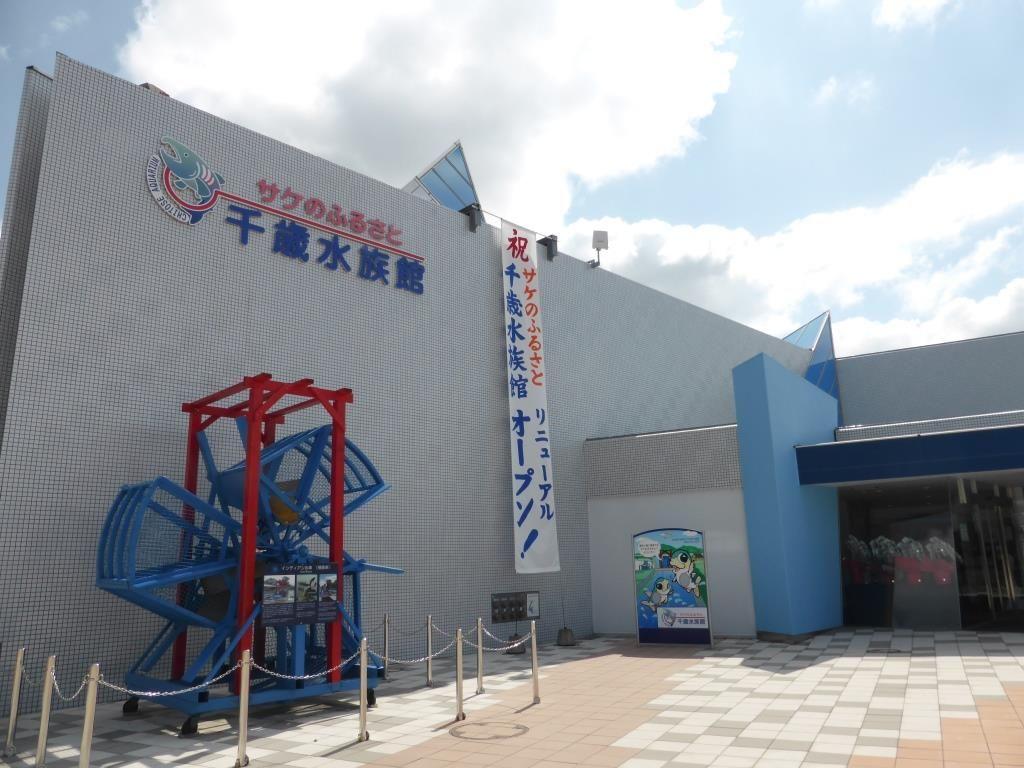 日本最大級!サケのふるさと千歳水族館を楽しむ5つのポイント