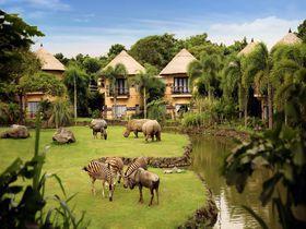 窓の外は動物園!バリ島「マラリバーサファリロッジ」