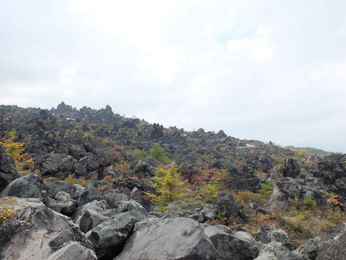まずは雄大な浅間山の山麓にある鬼押出し園へ。