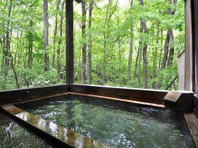 客室でも温泉でもず~っと森林浴!福島「御宿 万葉亭」は源泉かけ流しの癒し宿|福島県|トラベルjp<たびねす>