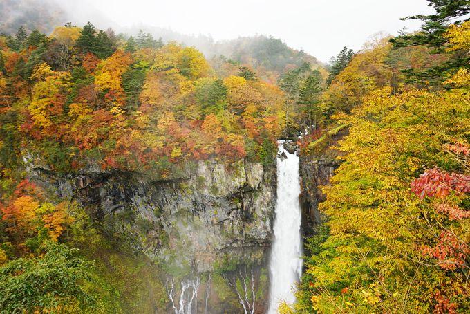 日本三名爆の一つ「華厳の滝」と奥日光で圧巻の紅葉を堪能!(栃木)