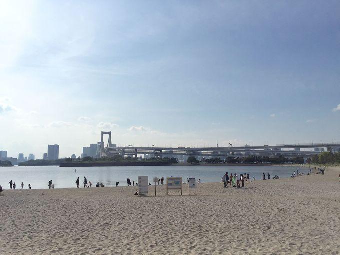 駅近で絶景!憩いのオアシス「お台場海浜公園」
