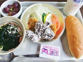骨まで愛してしまいそう!?千葉・和田浦でクジラ三昧の旅!|千葉県|トラベルjp<たびねす>