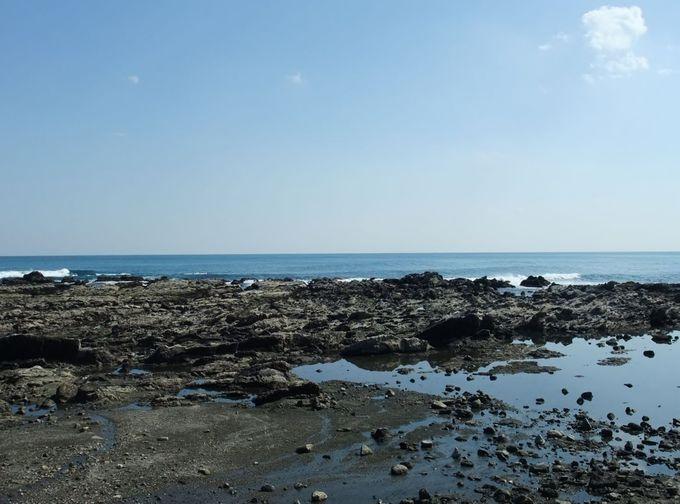 岩礁が続く「太夫崎海岸」