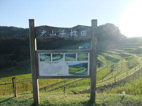 秋の夜長は里山で。千葉・鴨川の「棚田の夜祭り」へ行こう!|千葉県|トラベルjp<たびねす>