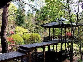 日光・知られざる名庭園「松屋敷」クリンソウも美しい1万坪の庭とは|栃木県|トラベルjp<たびねす>