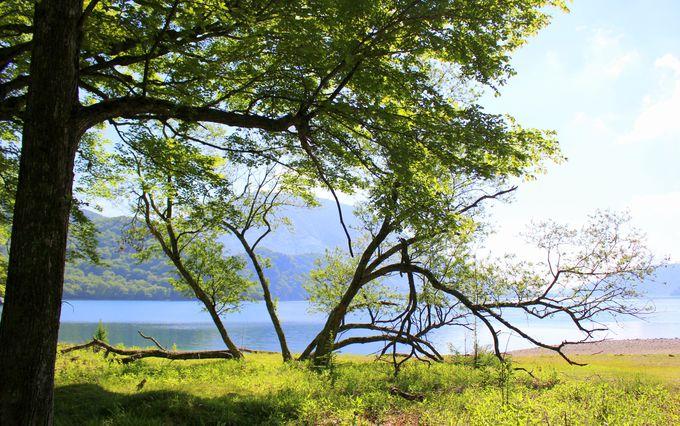 A・サトウが感動した<絵のように美しい風景>。中禅寺湖を一面に見渡す別荘