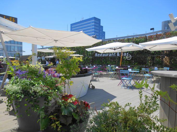 レストラン&バー「La Terrasse」でヨーロッパテイストのグルメなランチやディナーを!