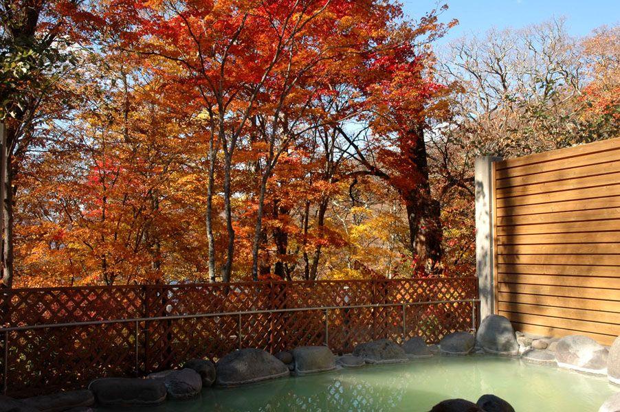 絶景!「空風呂」で日光の大自然と満天の星空に抱かれよう!