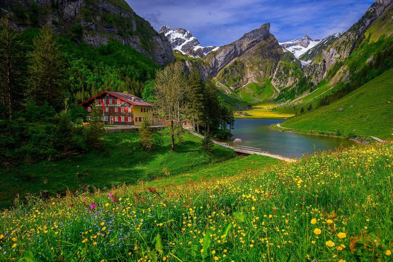 まるで天国!スイス絶景の湖畔に泊まる!「ベルグガストハウス・ゼーアルプゼー」