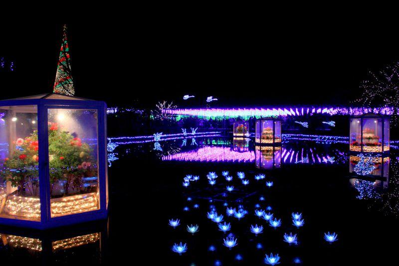 """日本夜景遺産&イルミネーション全国1位「あしかがフラワーパーク」2017年は""""光と冬ボタンの競演"""""""