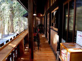 御神木の上で絶品ランチ!日光山内「本宮カフェ」は築330年の美しき古民家再生カフェ!|栃木県|トラベルjp<たびねす>