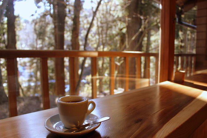 御神木の上にコーヒー?足の下に御神木?