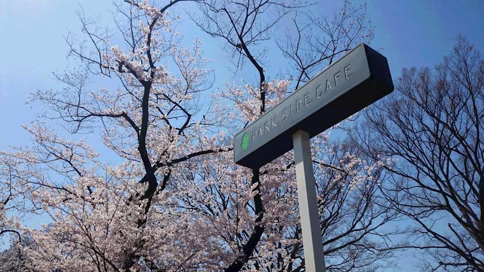 お花見スポットの真ん中の「上野の森パークサイドカフェ」