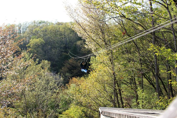 ツインリンクもてぎ「森と星空のキャンプビレッジ」のお楽しみはまだまだ続く!