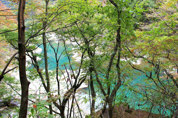 絶景紅葉狩り「日塩もみじライン」は温泉も凄い!