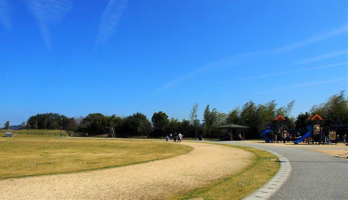 充実した遊具と綺麗な芝生の広場で子供も大満足