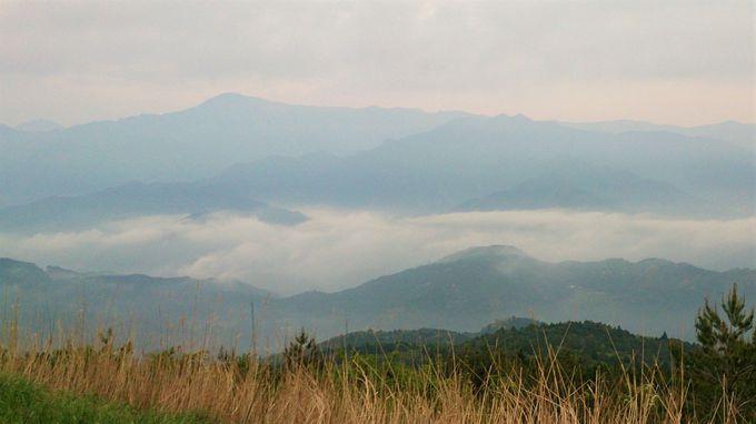 早朝の景色と雲海は、まさに天空
