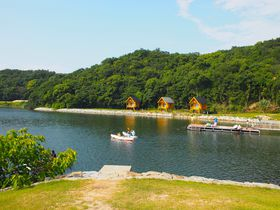キャンプ初心者に!快適で自然も豊富 東かがわ市「大池オートキャンプ場」|香川県|トラベルjp<たびねす>