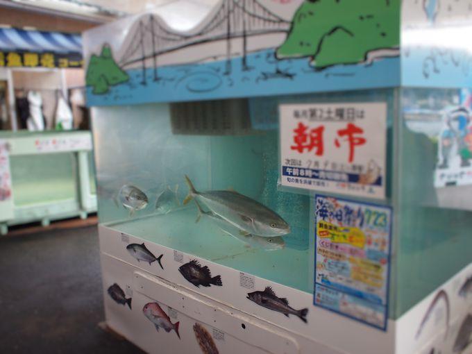 活魚の即売コーナー