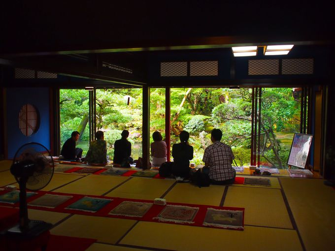 日本庭園を眺めながら、抹茶でおもてなし