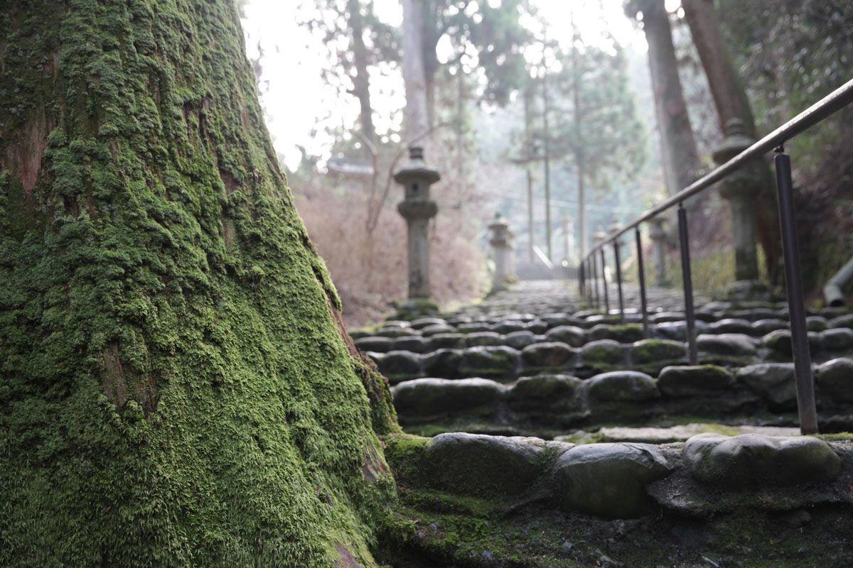 比叡山に続く石段