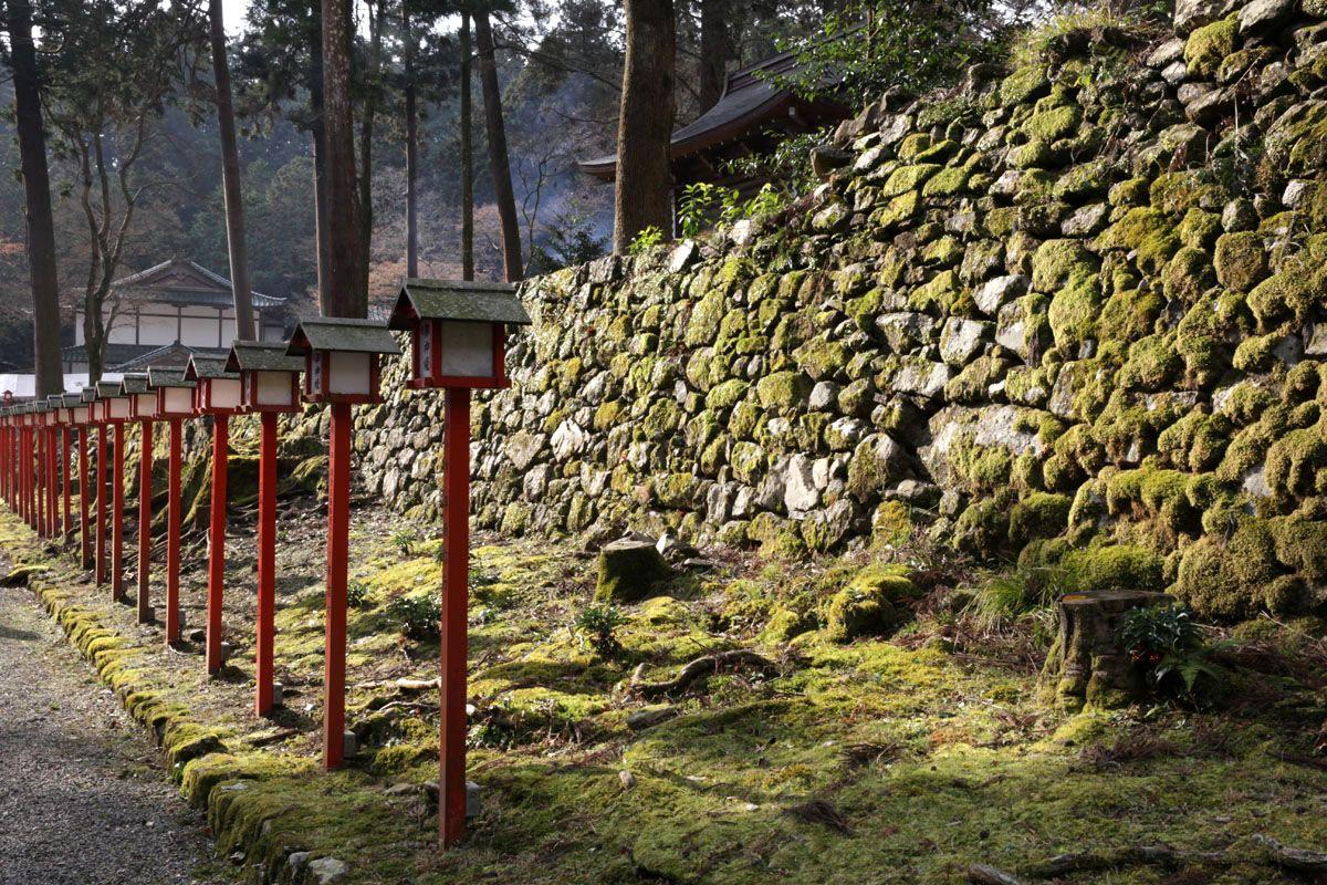 神仙な雰囲気を纏った石垣たち