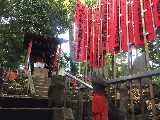 芸能界にもファン多数、代々木八幡宮「出世稲荷神社」