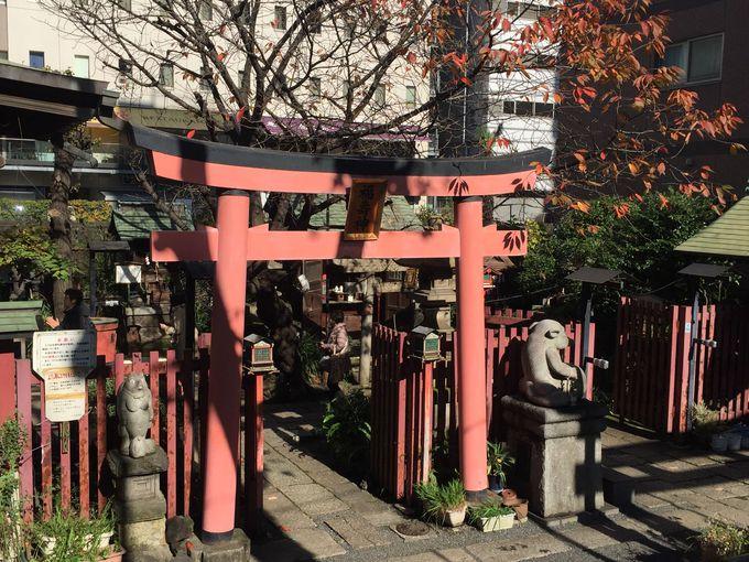狸の御利益、千代田区神田「柳森神社」