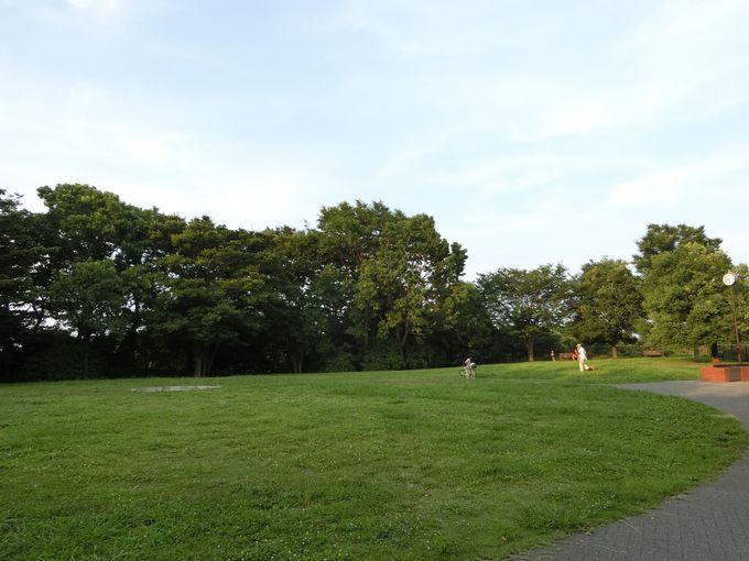 広大な細長い敷地には何でもありのワクワク感!本牧(ほんもく)市民公園