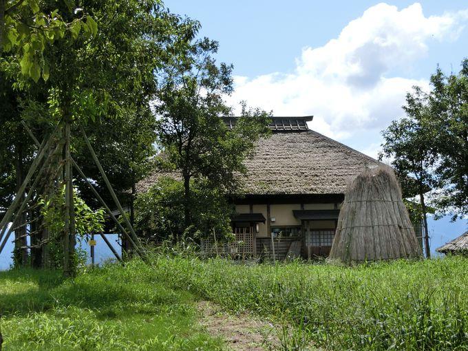 江戸時代から続いた干拓の歴史。住民と自然との共生へ。