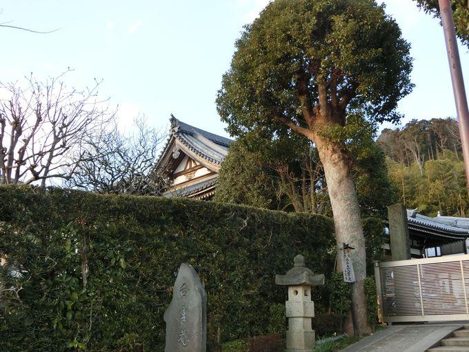北鎌倉に根付く禅の教え。至る所で感じる「祈る」という日常