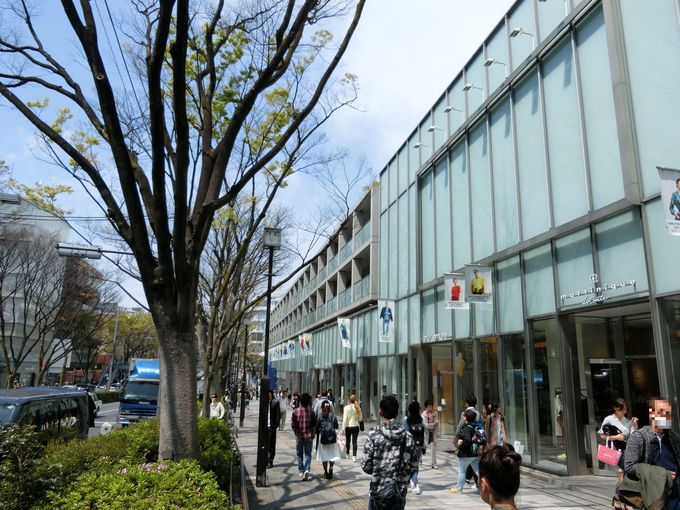 TOKYO随一のお洒落スポット!「表参道」の歴史と変遷