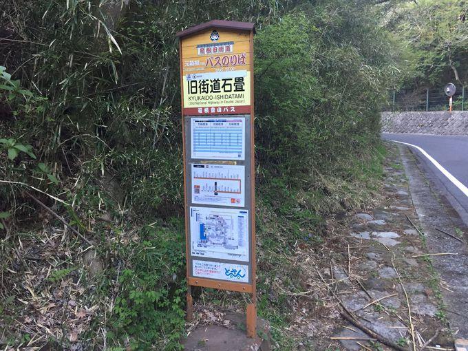 復路はバス移動が便利。余裕があれば茶屋まで足を延ばしてみよう