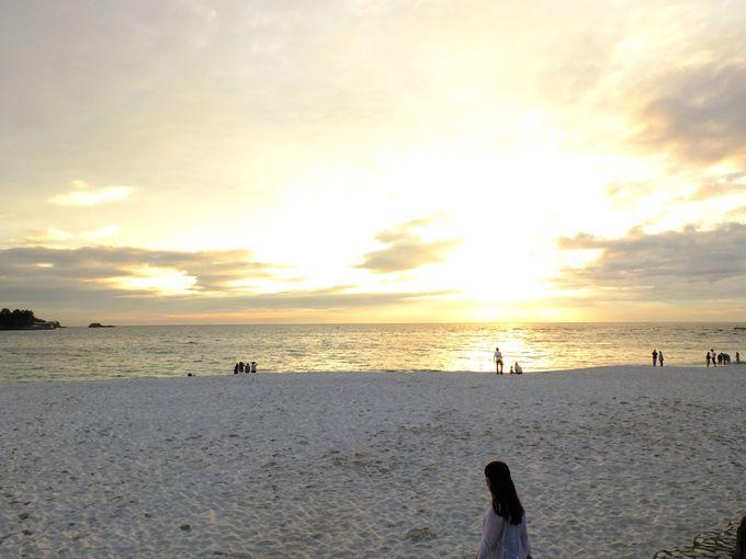 見所満載!白良浜を取り囲む魅惑の環境