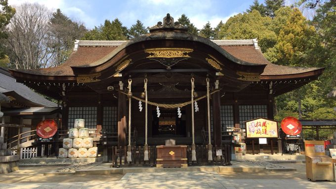 信玄の本拠地だった「武田神社」は歴男・歴女におすすめ!