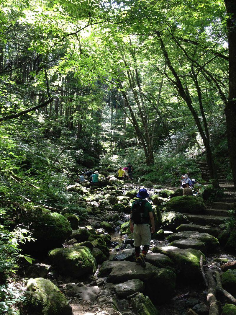 登山初心者にもおすすめ! エメラルドグリーンのロックガーデンを目指す御岳山トレッキング!