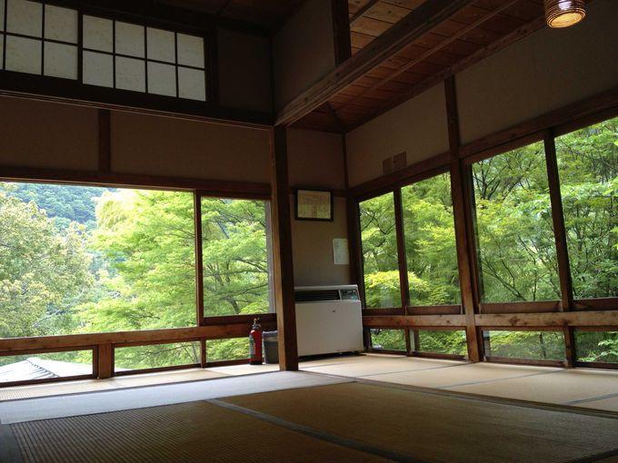 箱根の大自然に囲まれて、贅沢なうたた寝を