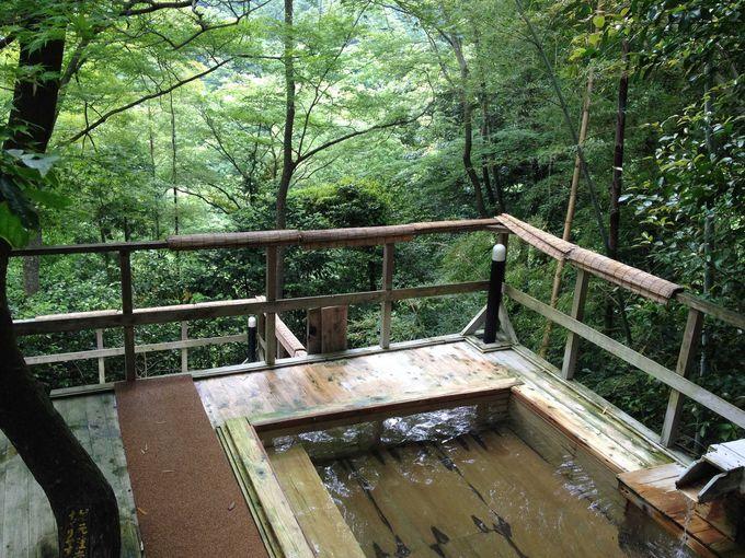 箱根の山々と一体となる入浴感を味わう