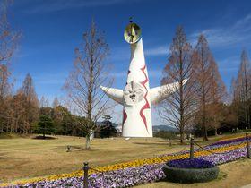 大阪「太陽の塔」再生!岡本太郎のベラボウな塔に会いに行こう