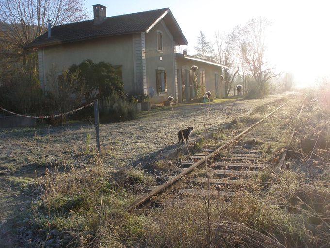 田園風景に囲まれた昔の鉄道駅舎と線路