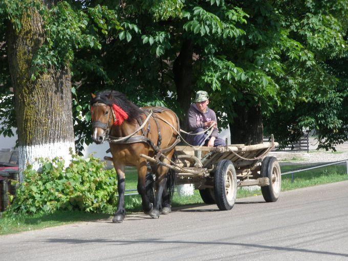 昔ながらの生活が残るルーマニアのブコヴィナ地方