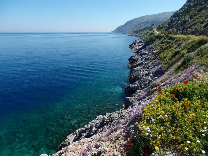 自然美溢れるイドラ島の海岸線