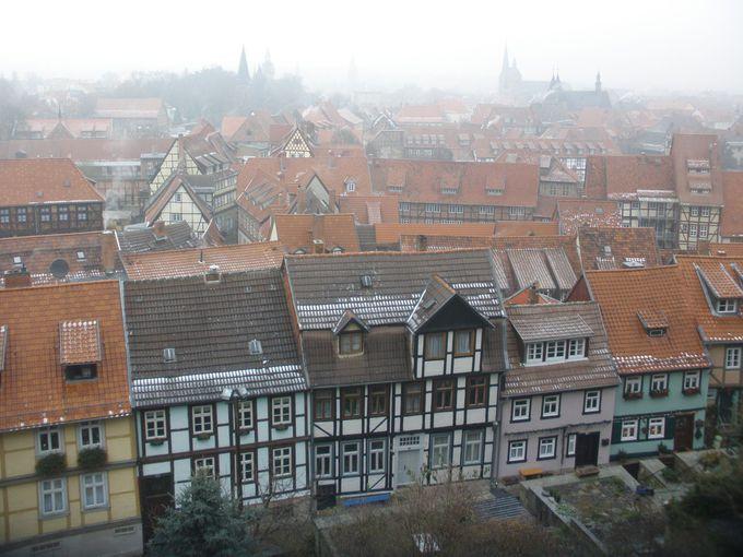 お城の庭園から見渡す冬の旧市街は幻想的