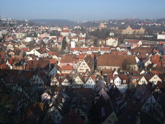 唯一の見所といえるホーエンチュービンゲン城から素晴らしい眺望を!