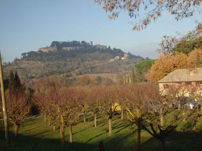 葡萄畑の中に浮かぶ町並みは城壁に囲まれて