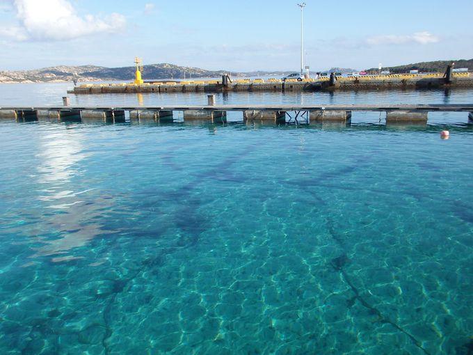 マッダレーナ島へのフェリーが出るパラウの美しい港